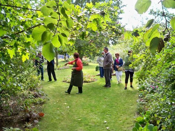 Les amis du jardin exotique de cosy home jardin exotique for Amis du jardin botanique